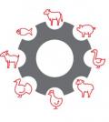 meat_tech_logo